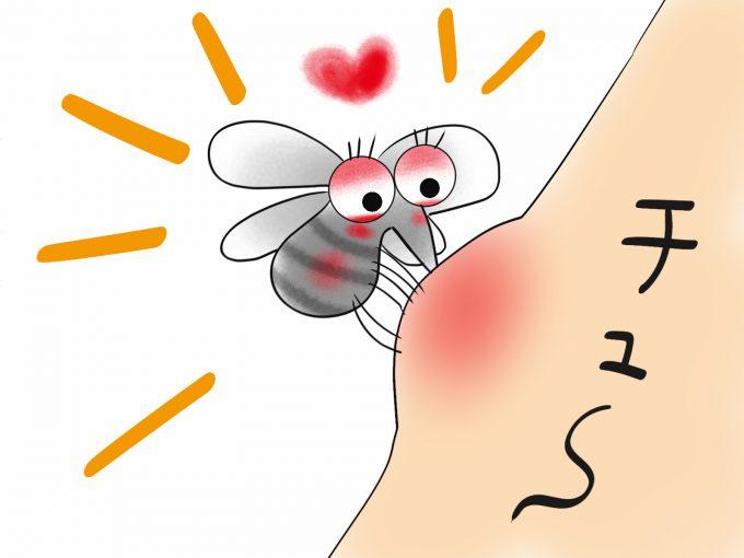 【赤ちゃんの蚊対策】市販の4タイプ商品利用の影響と蚊から子供を守る4つの方法