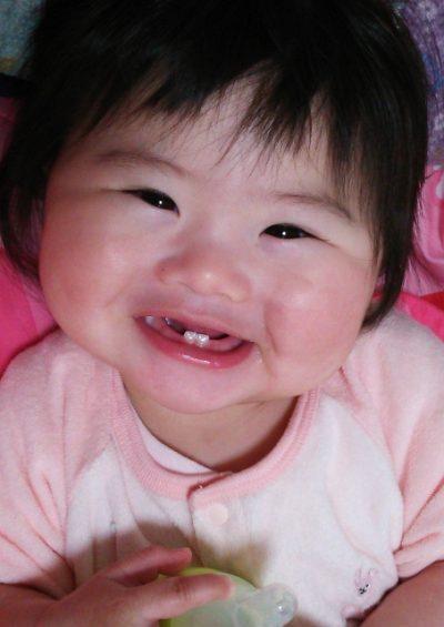 【赤ちゃんにフッ素使っていい?】フッ素使用の「2つの嘘」と適した塗布時期